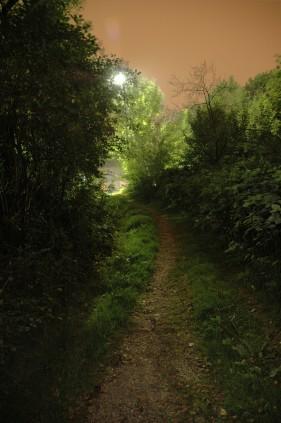 path-at-night-1188084